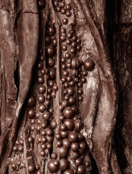 Detalle del Balzac de chocolate